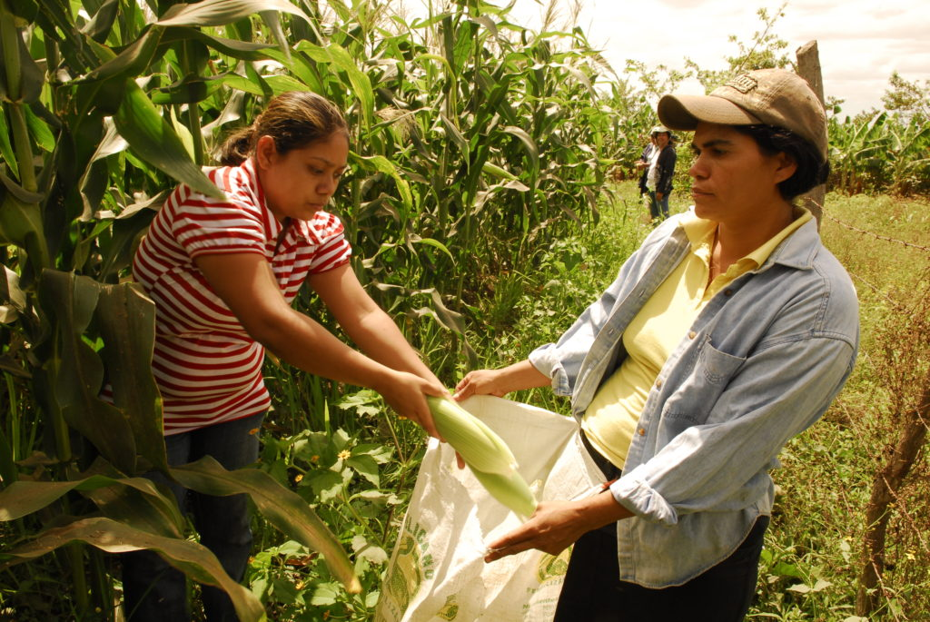 Imagen: Oxfam Latin America and the Caribbean Blog